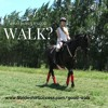 What Makes a Good Walk?