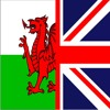 Dewi - English-Wales - Male - eLearning High-pitched character voice