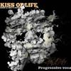 DJ QIKIY - KISS OF LIFE (MIXED) mp3