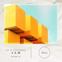 RAC - 3AM (Filous Remix)