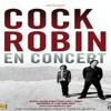 Just Around The Corner-Cock Robin (C.J Spirit cover)