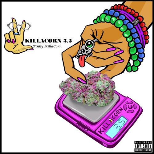 14. What Hippie What Feat Visto