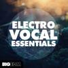 Big EDM - Electro Vocal Essentials [Vocal Samples, Loops, Shouts, FX Loops] Beatport top 10 !