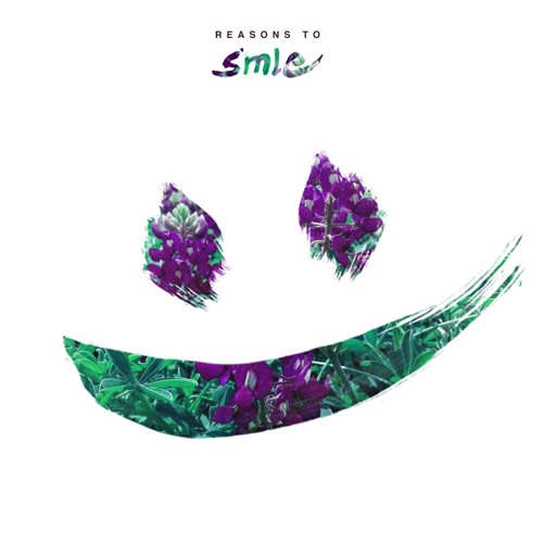 REASONS TO - SMLE