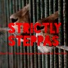 Strictly Steppas - Reel Two - TechnoReggae Frees Animal From Zoo (mixtape)