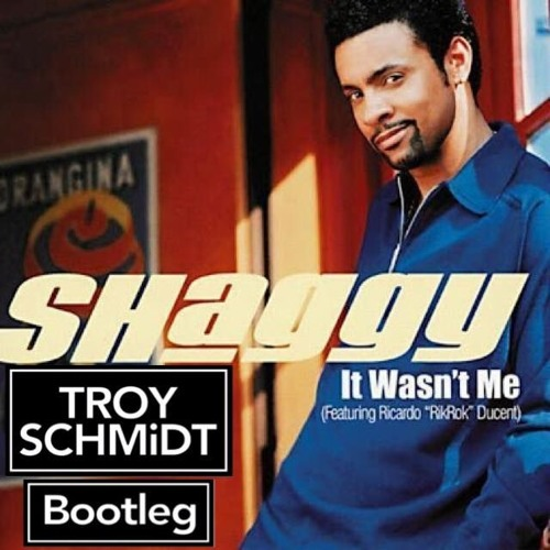 shaggy it wasnt me song free download