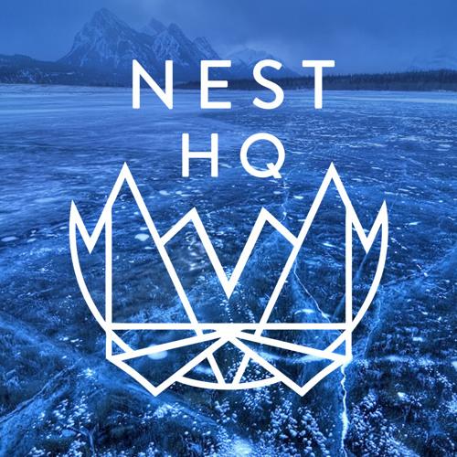 Nest HQ MiniMix: DUCKY