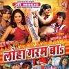 Sawa Du Ke Chudiya Na Hath Me | Loha Garam Ba | Bhojpuri Lokgeet 2014 | Alokshri Gupta