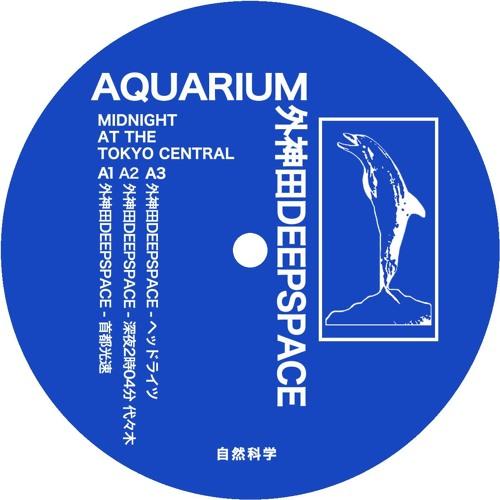 AQUARIUM / 外神田DEEPSPACE 'MIDNIGHT AT THE TOKYO CENTRAL'