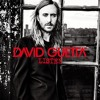 David Guetta feat. Rosie Rogers - Without You (Nelio Mix)