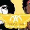 All Gold Emotion (Aerosmith X Trinidad James)