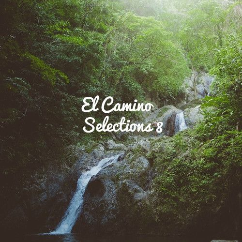 AYES COLD X EL CAMINO TRAVEL : Selections Continued // 8