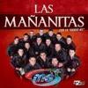 Banda Ms Las Mau00f1anitas 2015 Mp3