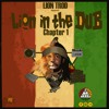 Lion Trod - Lion In The DUB #Chapter1 Mixtape [FREE DOWNLOAD]