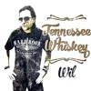 Tennessee Whiskey (Chris Stapleton Cover)