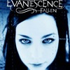 Evanescence - Haunted (Male Ver)
