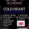 """COLD HEART RIDDIM"" (MegaMix) BIG YARD MUSIC -General Degree, Busy Signal, Chris Martin"