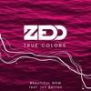 Zedd - Beautiful Now Ft. Jon Bellion ( DJ MCK Remix )*Free Download*