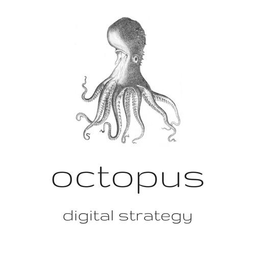 Episode 27: The Digital Strategist In The Netherlands