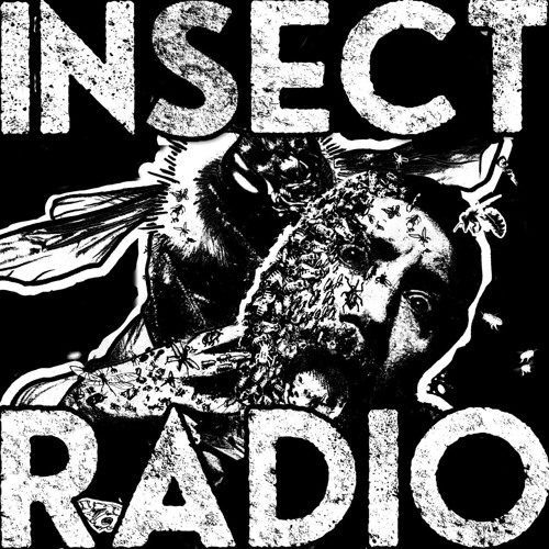 01 Insect Nation