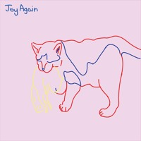Joy Again - Looking Out For You
