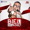 BAILE EM CASA 8.0 DO DJ BIEL DO ANIL - RITMO DE ANIVERSÁRIO Portada del disco