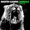 Martin Garrix-Animals  (60bpm & kawky edit)
