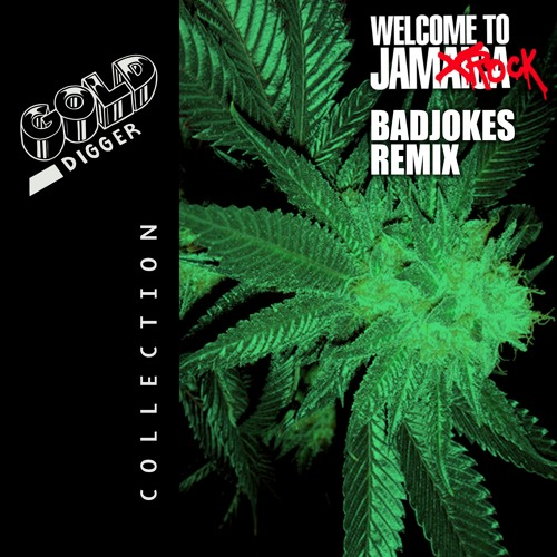 Damian Marley - Welcome to Jamrock (BADJOKES Remix)