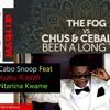 Cabo Snoop - Ntanina Kwame vs Been A Long Time (Mark Knight Remix)[Vin Aeoua Mash-up]