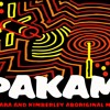 For Young Futures - Community Voices - PAKAM