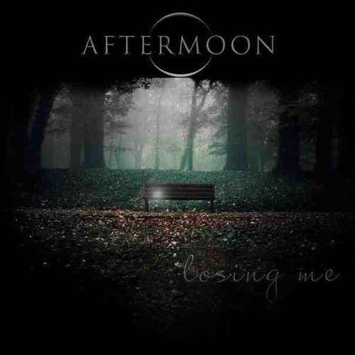Losing Me (album promo)
