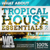 Tropical House Essentials 2 [3 GB of Construction Kits, Presets, Drum Samples / Loops]