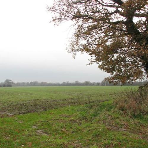 November Overcast