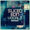 Download FL097 - Sliced EDM Vocals Vol 3 Sample Pack Demo Mp3