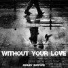 Without Your Love Demo