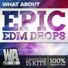 Epic EDM Drops [I'm the DJ Mobile App]