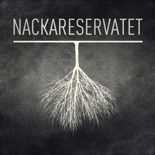 ElectricMainland - Bolywool - Nackareservatet Remix