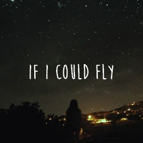 paragraph on if i could fly