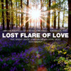 Aimoon, AxelPolo, Ost & Meyer, Stan Arwell, Tom Swoon, Vigel - Lost Flare Of Love (Roth Mashup)