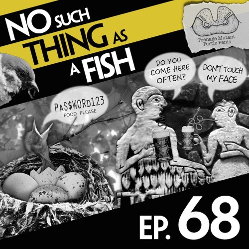 (27.37MB) Download now Episode 68: No Such Thing As A