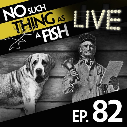 Episode 82: No Such Thing As A Sentient Iceberg