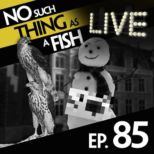Episode 85: No Such Thing As Michelangelo's Snowman