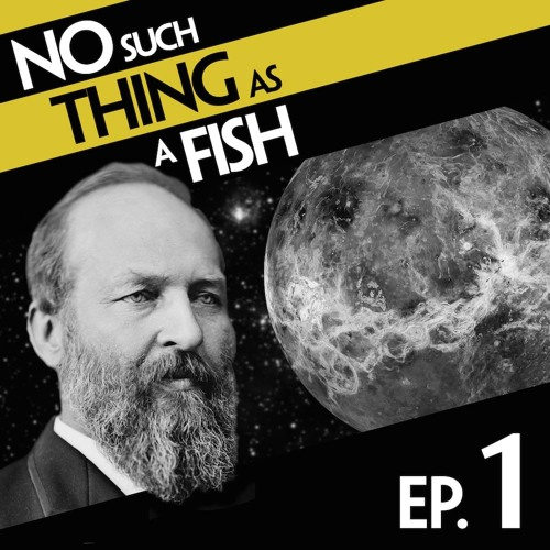 Episode 1: No Such Thing As A Pilot Fish