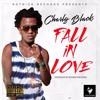 CHARLY BLACK - FALL IN LOVE [RAW] [FULL HOUSE RIDDIM]