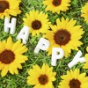 Happy People  | Royalty Free Music | Commercial Music | Promo Music