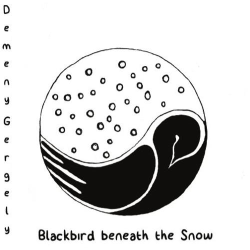 Blackbird beneath the Snow