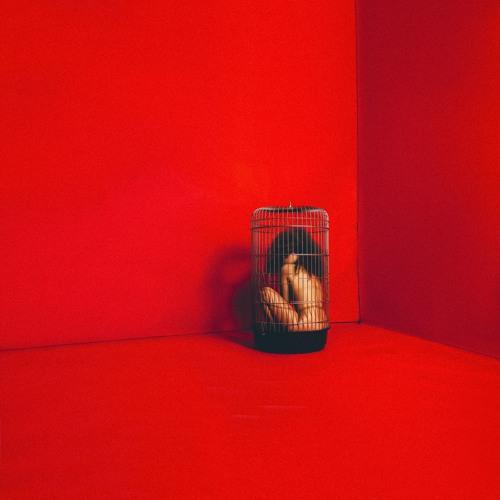 Eryn Allen Kane - Slipping