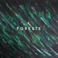 MTMBO Forests Artwork