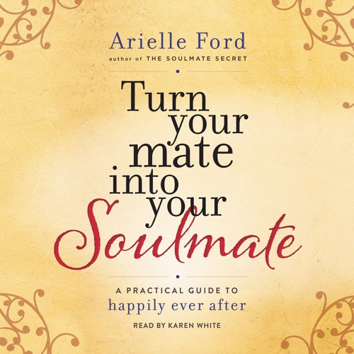 TURN YOUR MATE INTO YOUR SOULMATE by Arielle Ford