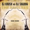 Giving Up The Ghost - DJ Shadow (Erik Jackson Holy Remix)